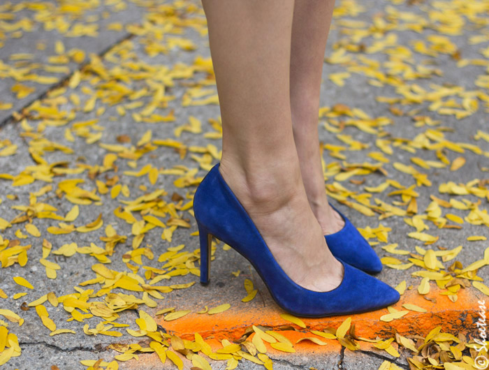 Cobalt blue Shoes for Fall 2014