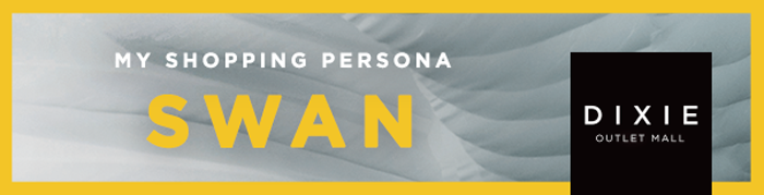 Style Quiz Swan Shopping Persona