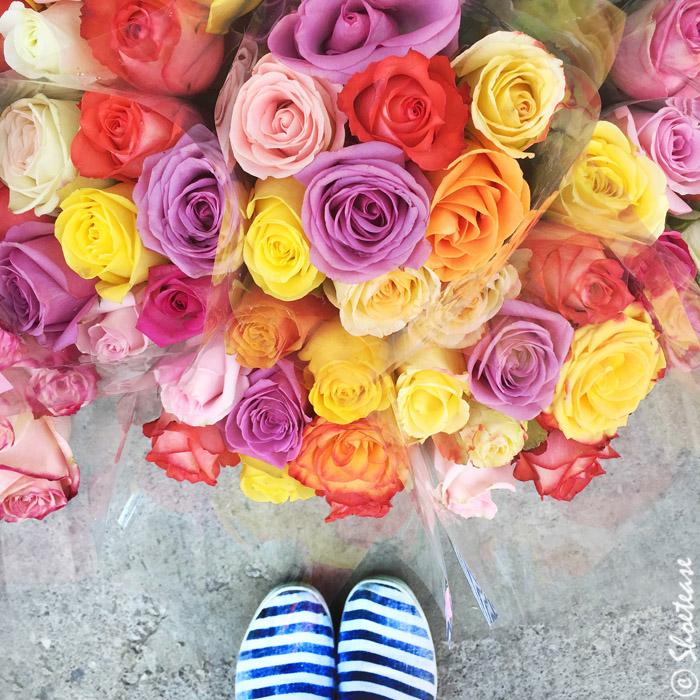 Shoefie Props Flowers Roses
